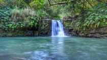 Maui Private Tour-Perfect Aloha day, Maui, Private Sightseeing Tours