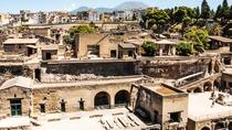 Herculaneum Ruins Private Half-Day Tour, Naples, Private Sightseeing Tours
