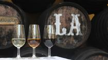 Wine Tour to Sanlucar de Barrameda from Seville with Optional Horse Riding, Seville, Food Tours