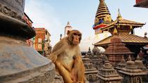 Private Kathmandu Sightseeing Tour, Kathmandu, City Tours