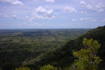 Mombasa Day Trip: Shimba Hills National Reserve Tour