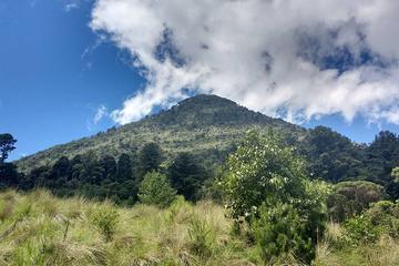 Hike to Santa Maria Volcano from...