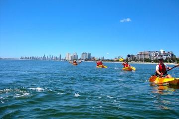 Wave Break Island Kayak, Bushwalking and Snorkeling Tour from the Gold Coast