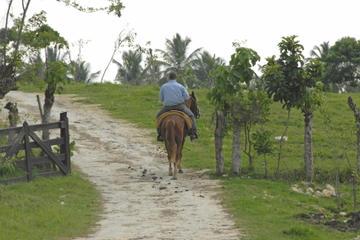 Excursão a cavalo por La do Palmeraie e pelo Lago Lalla Takerkoust...