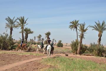 Halbtägiger Reitausflug und Quad-Bike-Abenteuer ab Marrakesch