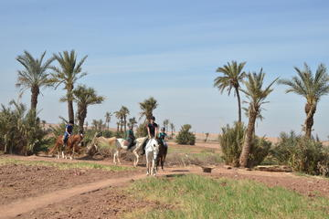 Tour giornaliero a cavallo e in quad da Marrakech