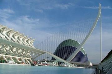 Shore Excursion: Valencia Half-Day Private Tour
