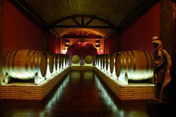 Villena and Winery Private Shore...