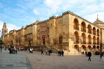 2- oder 3-tägige Tour: Córdoba und Sevilla ab Madrid mit dem Bus und...