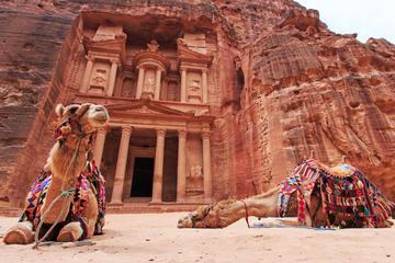 Petra and Wadi Rum: Southern Jordan...