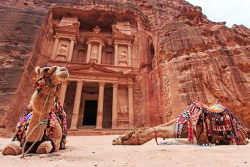 Southern Jordan Tour: Day trip to...