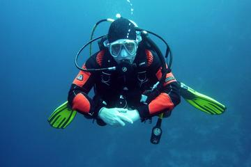 Discover Scuba Diving in Negril