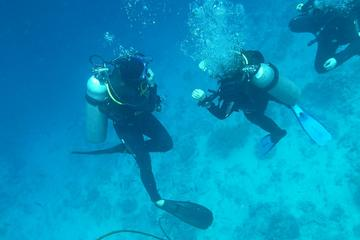 Falmouth Shore Excursion: 2-Tank Certified Scuba Diving Tour