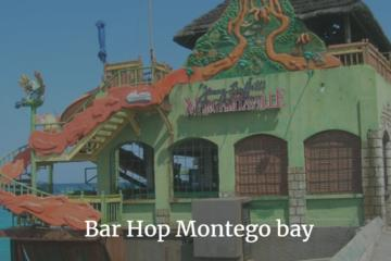 Montego Bay Pub Crawl To Negril and Rick's Cafe