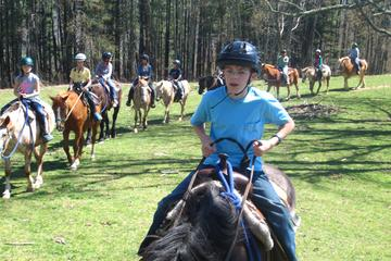 Day Trip Horseback Riding Adventure on the Flame Azalea Trail near Cullowhee, North Carolina