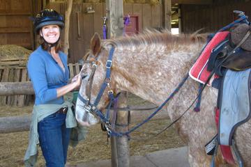 Horseback Riding at Arrowmont Stables