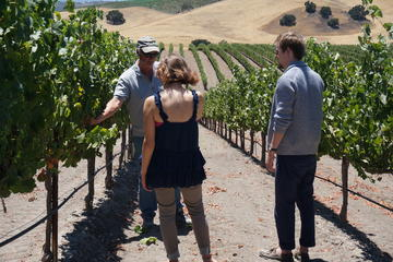 Private Winemaker's Wine Tour of Santa Barbara and Santa Ynez Valley