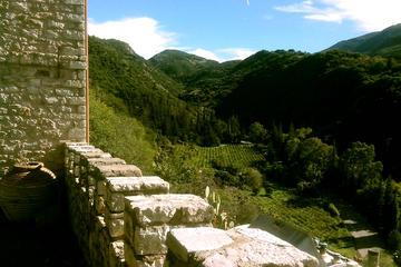 Viagem diurna à Vinícola Archaia...