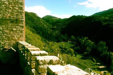 Weingut Archaia plus antikes Mykene...