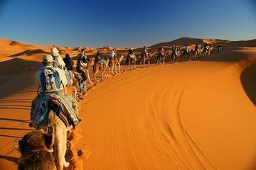 Esperienza privata di 2 notti nel deserto di Merzouga da Marrakech
