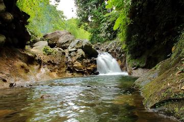Crawfish River Experience in St Vincent