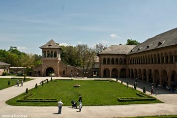 Excursion d'une journée au départ de Bucarest: le palais de...