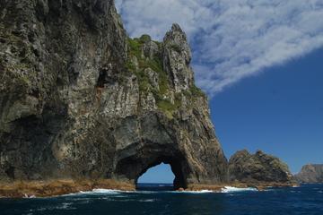 Excursão privada: Viagem diurna às Baías das Ilhas, saindo de Auckland