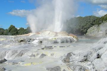 Excursion privée d'une journée complète à Rotorua au départ d'Auckland