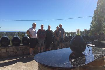 Private St-Jeannet, St-Paul-de-Vence, and Wine Tour from Monaco