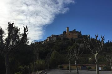 Shore excursions private custom half day tour to Eze and La Turbie village  Monte carlo from Monaco