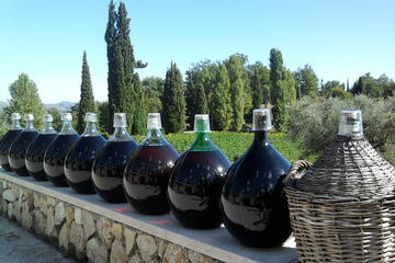 St. Jeannet Wine Tasting and St. Paul-de-Vence Private Tour from Nice