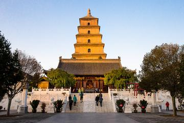 One Day Terracotta Warriors and Big Wild Goose Pagoda Small Group Tour
