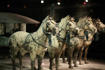 Terra-cotta Warriors and Tang Dynasty...