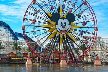 Experiências Disney Tour VIP...