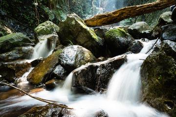 Wanderung durch Hongkong zum Tai Mo Shan mit Wasserfall-Abenteuer