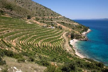 Tour di 8 giorni dell'uva Zinfandel della Dalmazia da Spalato