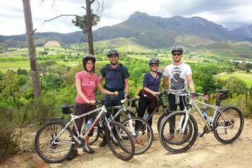Geführte Fahrradtour durch Stellenbosch
