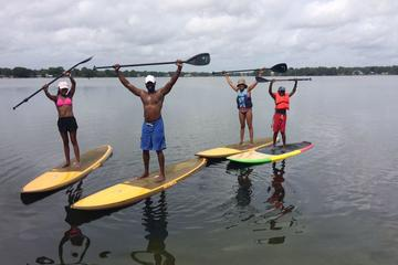 Day Trip 2-Hour Paddleboard or Kayak Rental on Paddleboard in Winter Park near Winter Park, Florida