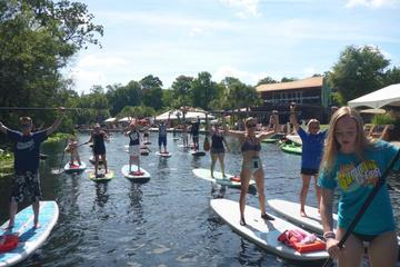 Day Trip Wekiva River Stand Up Paddleboard Eco Tour near Longwood, Florida