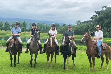 Horse Riding with Buffaloes and Hacienda Lunch