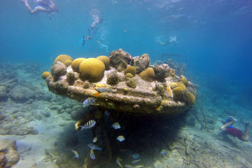 Certified Scuba Diving in Curacao