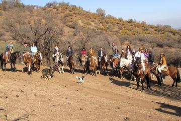 Excursões com passeio a cavalo