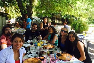 Excursión vinícola de día completo desde Santiago