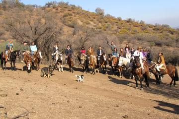 Full-Day Horseback Riding Tour in Cajón del Maipo