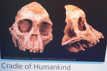 Cradle of Humankind and Maropeng Day Tour from Johannesburg