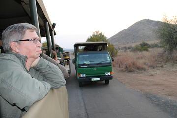 Safari dans le parc national de Pilanesberg au départ de Johannesburg