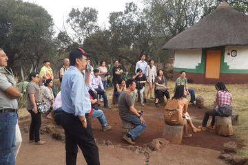 Village culturel de Lesedi au départ de Johannesburg
