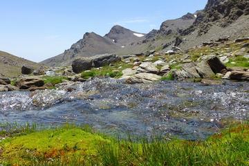 Excursão de caminhada de dia inteiro em Sierra Nevada saindo de...