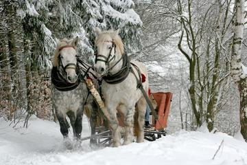 ZAKOPANE & SLEIGH RIDE TOUR