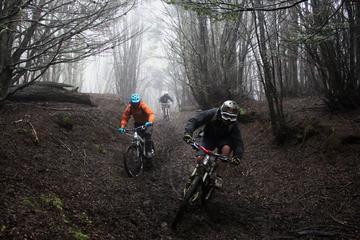 Mountain Bike Adventure in Punta...